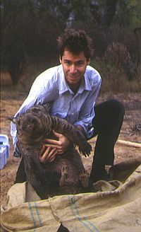 Dr. Paul Sunnucks and a northern hairy-nosed wombat